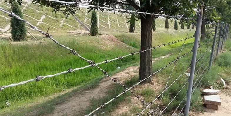 刺绳护栏网的拦阻应用