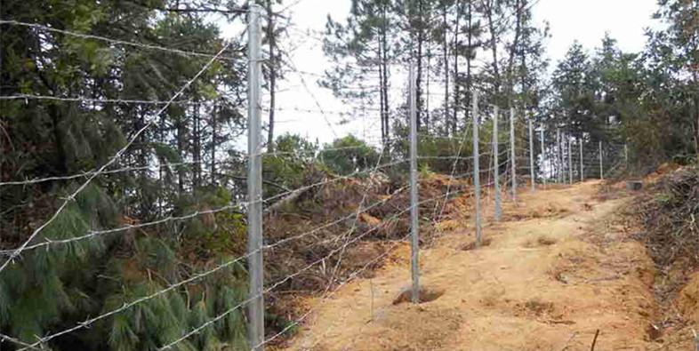 刺绳护栏网的防护应用