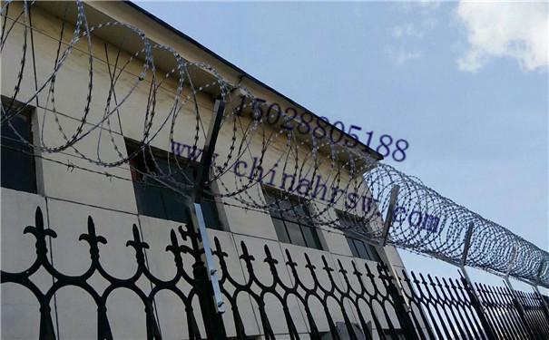 刺绳防护网价格
