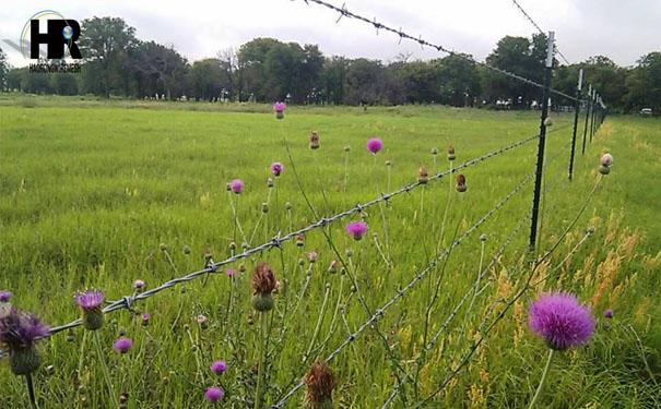 山区安装刺绳比护栏网的优点